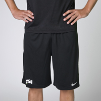HL24 NIKE Team Fly Short